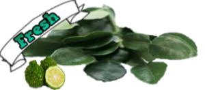 Fresh Kaffir Lime Leaves online Store|Kaffir Lime Leaves for Thai Recipes